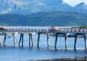 Bridges - bridges